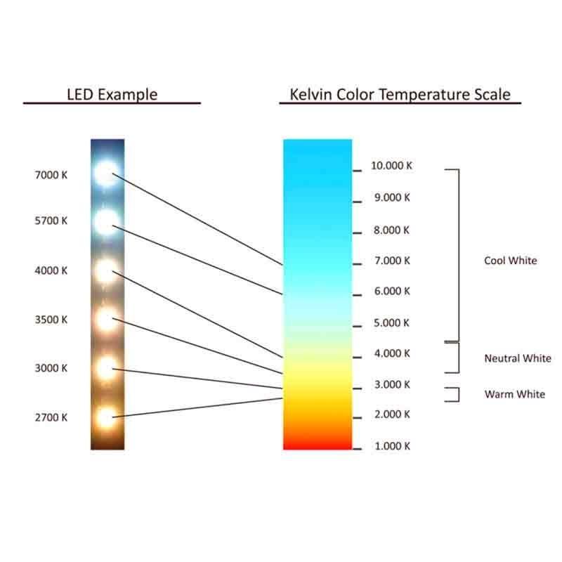 Image 3 : Projecteur led 30 W sur ...